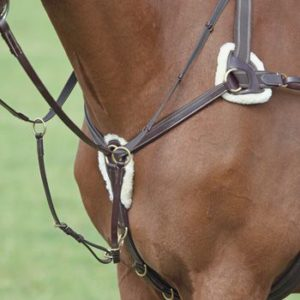 Shires 5 point Breastplate