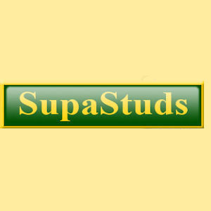 Supastuds Small Conical Stud SS002
