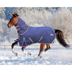 Bridleway Whistler Turnout Rug And Neck Set