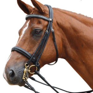 Albion KB Weymouth Double Bridle - Build your own.