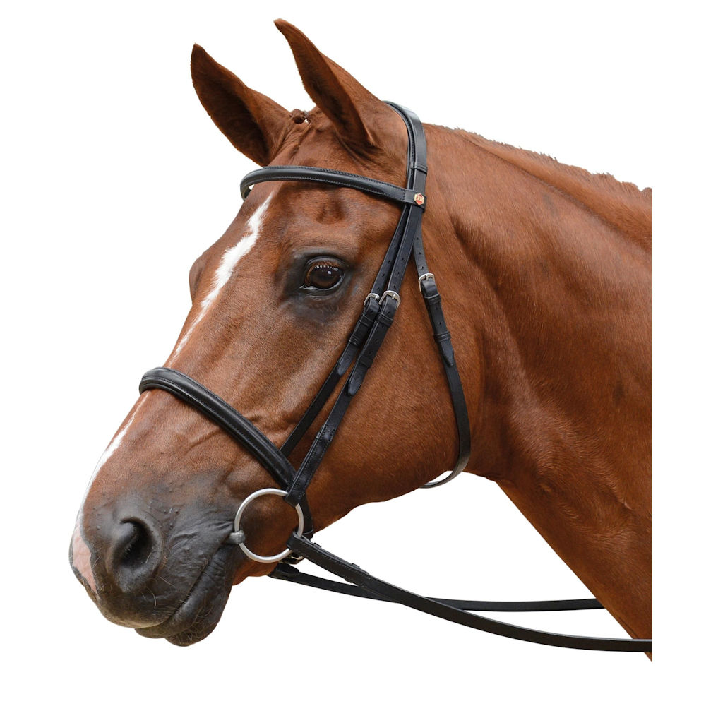 Albion Calf Padding  Browband to FIt Snaffle Bridle Full Size Choco