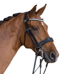 Fairfax Performance Double Bridle Parts