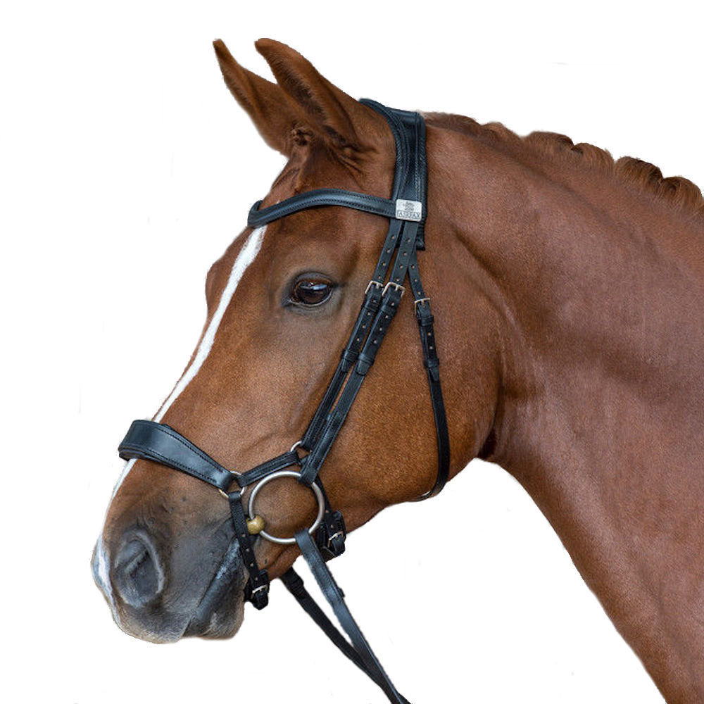 Fairfax Performance Snaffle Bridle Parts