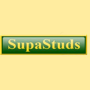 Supastuds Small Polo Stud SS015