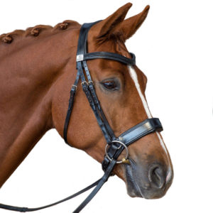 Fairfax Performance Snaffle Noseband