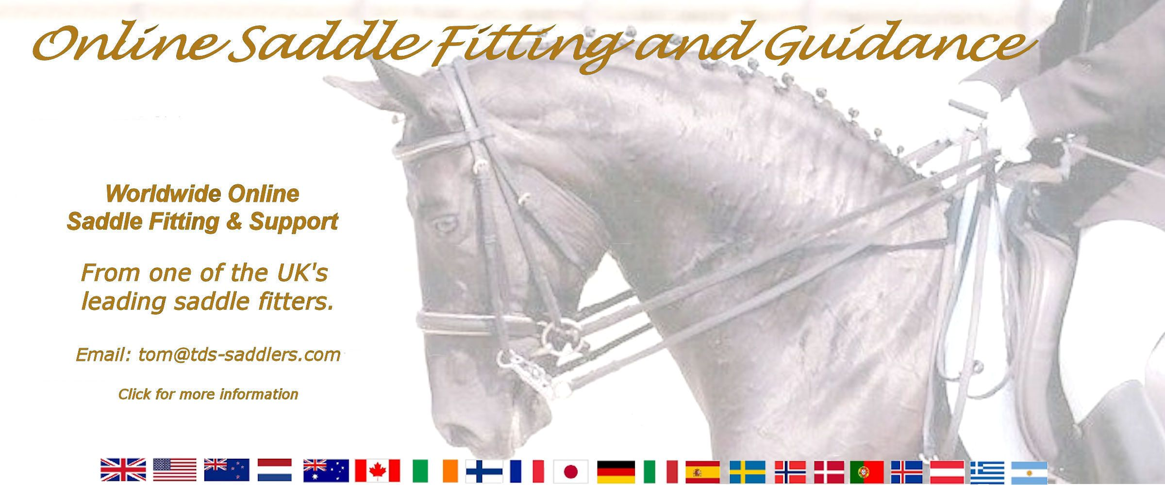 saddle fitting guidance